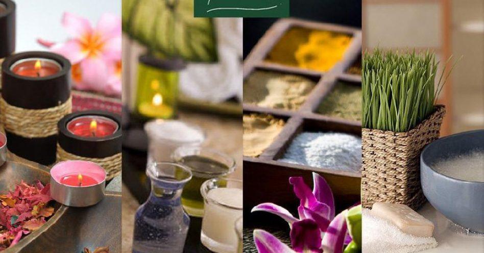 Veganismo, Manipulação, Spas e Aromatologia são temas na Naturaltech