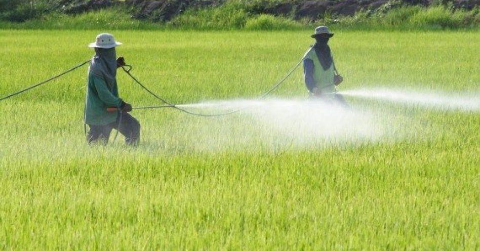 Governo anuncia Programa Nacional de Redução do uso de Agrotóxicos