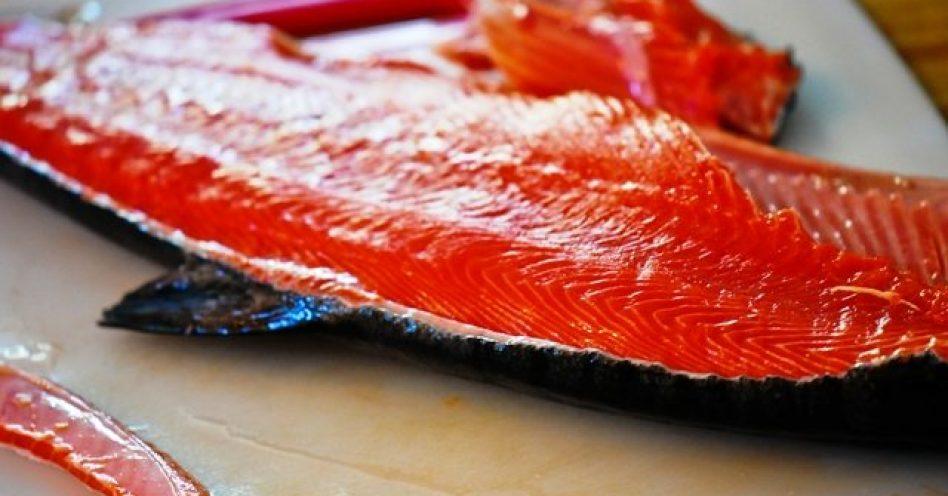 As cinco espécies de salmão do Alasca