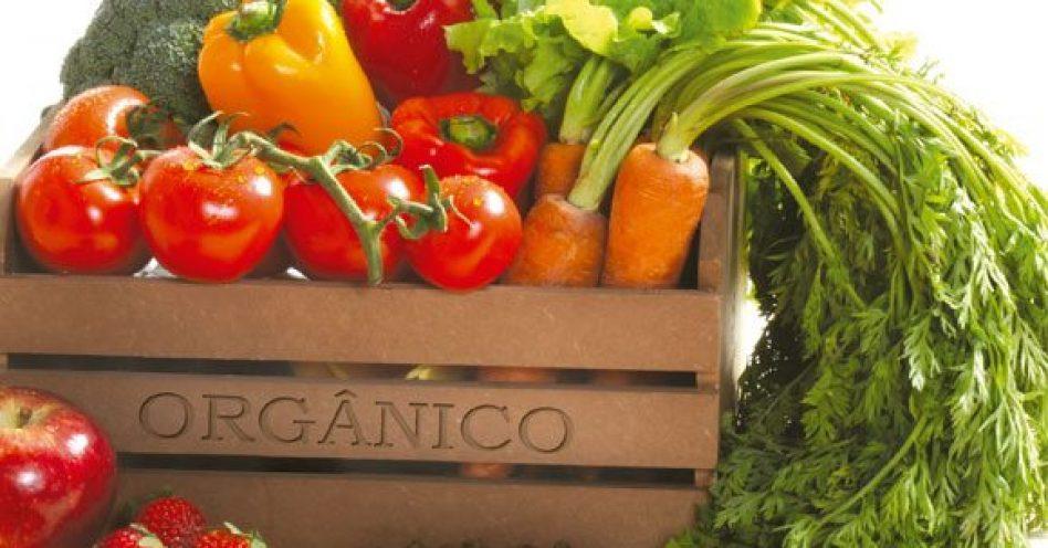 Governo reforça controle de qualidade nos produtos orgânicos