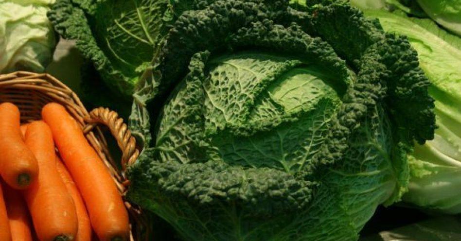 Feira de orgânicos do Jabaquara passa por análise de qualidade