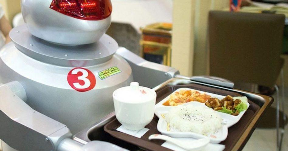 Robôs ordenhando vacas? Sim! Robotização é realidade na indústria de alimentos e bebidas