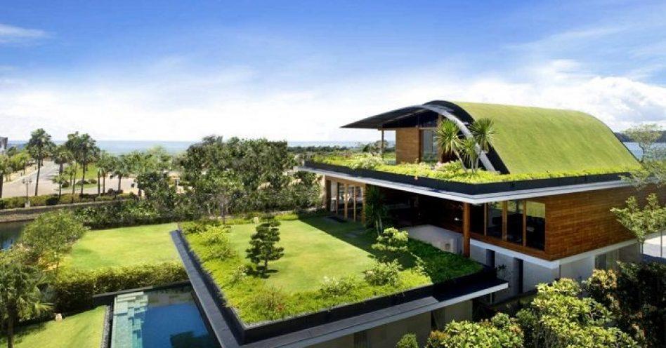 Vantagens do telhado verde
