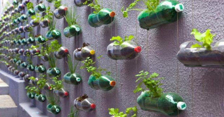 Marcelo Rosenbaum projeta horta vertical prática e sustentável