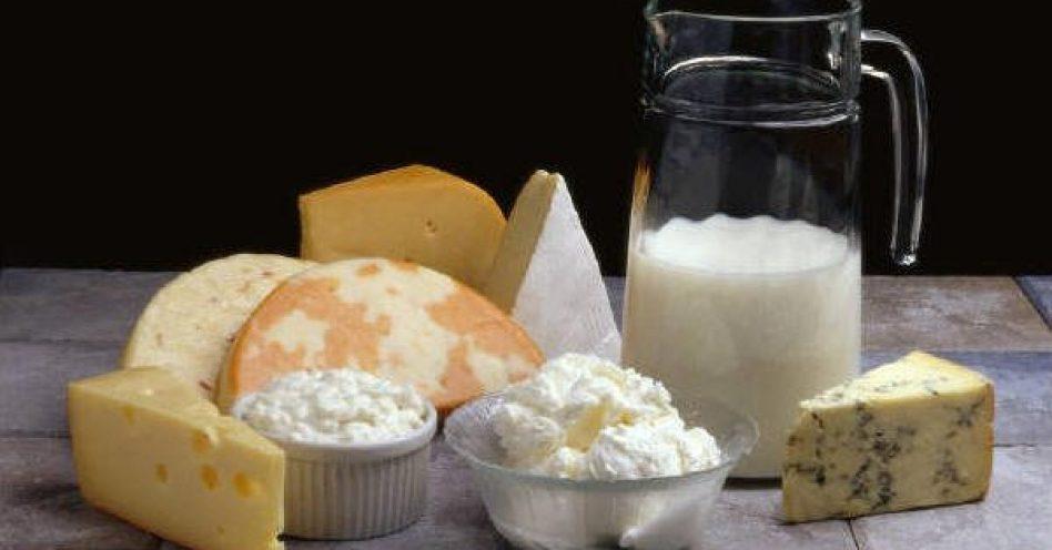 Fispal Tecnologia prepara empresários para exportar produtos lácteos