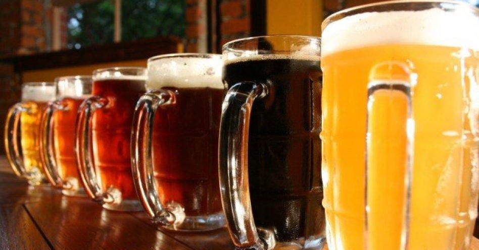 Fispal Tecnologia traz dicas para empreender no ramo de cervejas artesanais