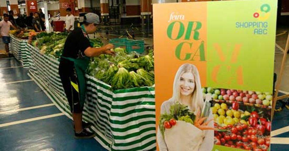 Feira orgânica oferece educação ambiental para crianças