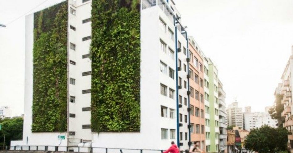 Jardins verticais dão nova cara ao Minhocão