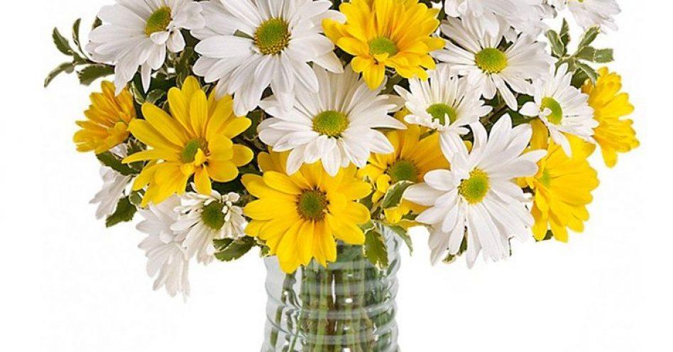 Flores indicadas para o outono
