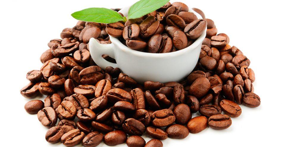 Café orgânico é gostoso e faz bem