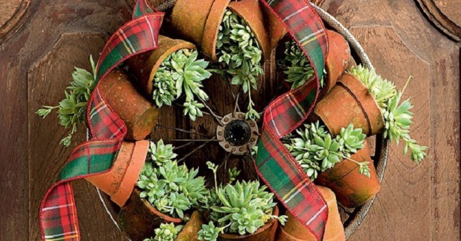 Inove na decoração de Natal com plantas naturais