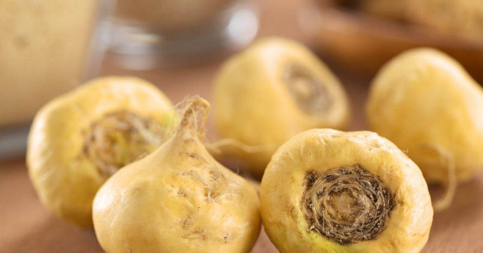 Conheça dez benefícios da maca peruana para o organismo