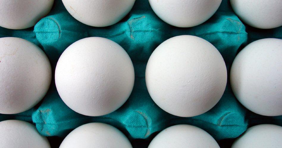 Ovo de galinha caipira é orgânico?