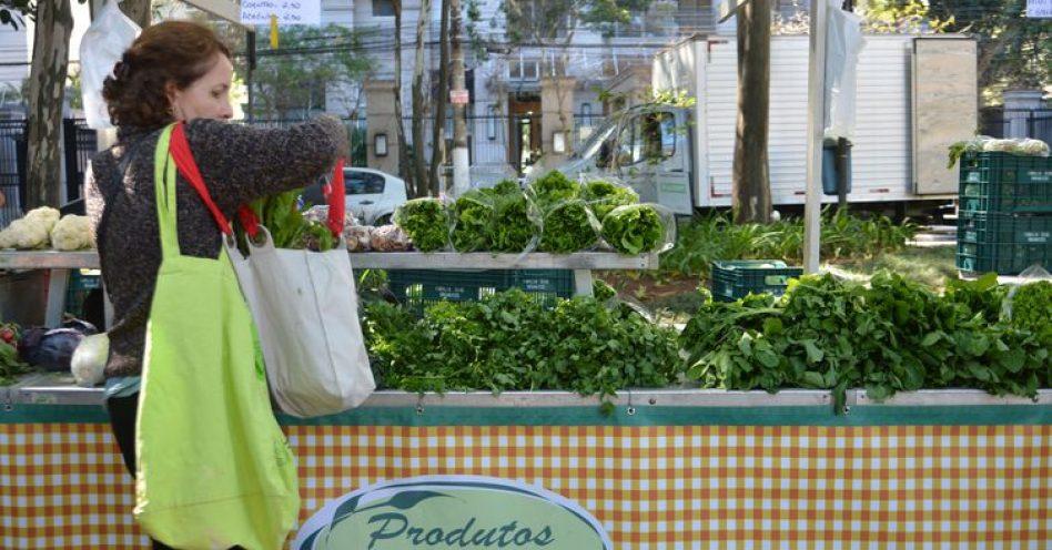 Segmento de alimentos saudáveis deve crescer 3% ao ano até 2022