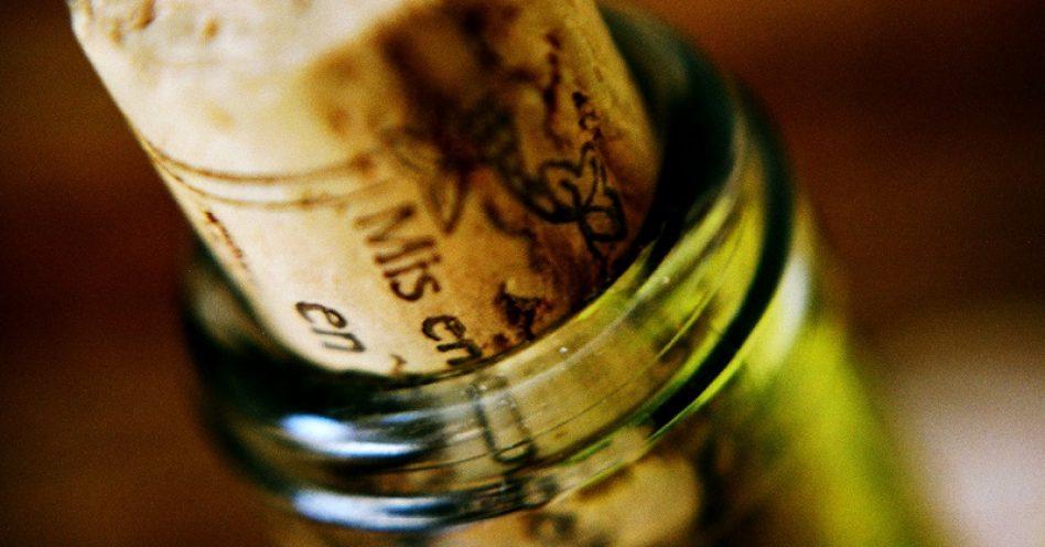 Vinho orgânico ganha espaço