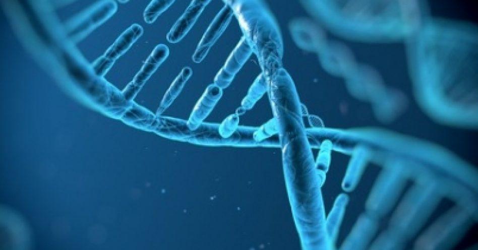 Genética pode determinar preferência por doces