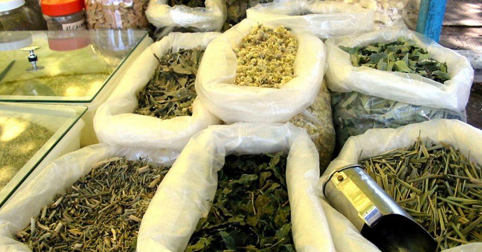 Parque da Água Branca tem feira de produtos orgânicos