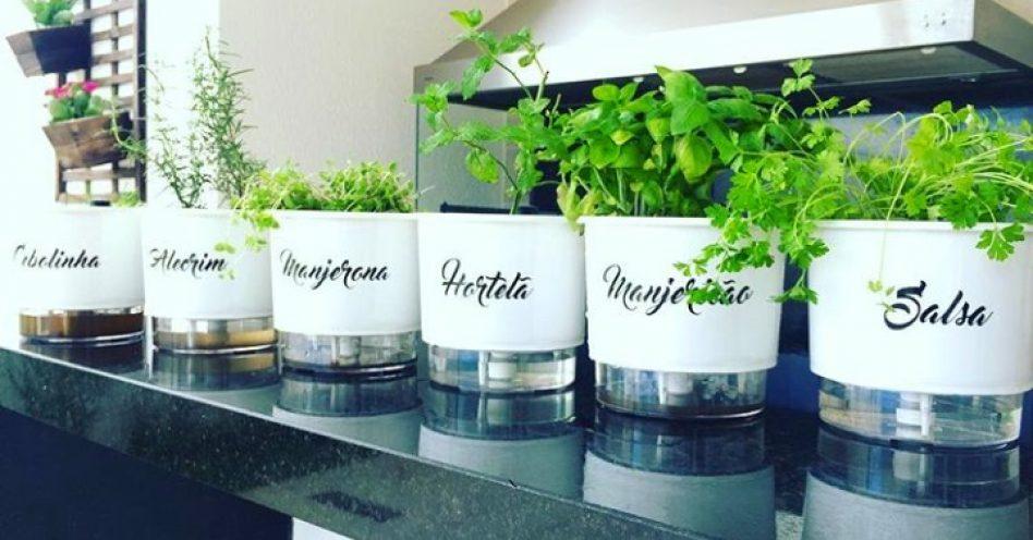 5 dicas preciosas sobre horta em apartamento