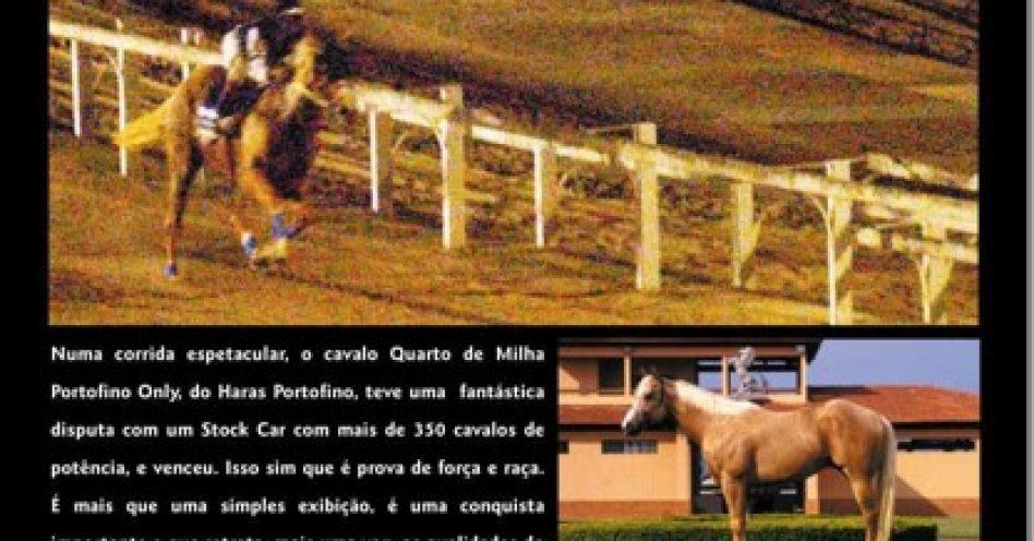 Cavalo x bólido de corrida